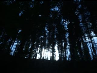 PRATOMAGNO | un documentario di animazione