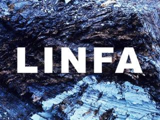 LINFA – Albero Infinito